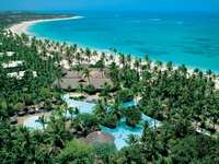 Отель BAVARO PRINCESS  ALL SUITES & SPA 5*